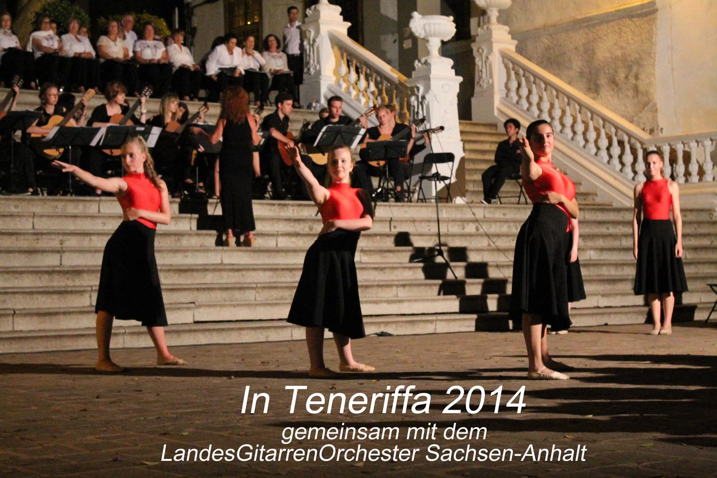 2014 LGO Teneriffa