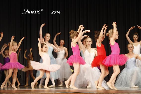 2014 Minkus